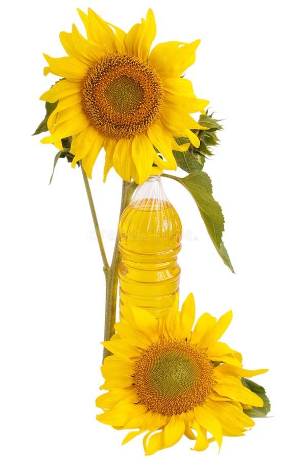 Sunflower oil and sunflower