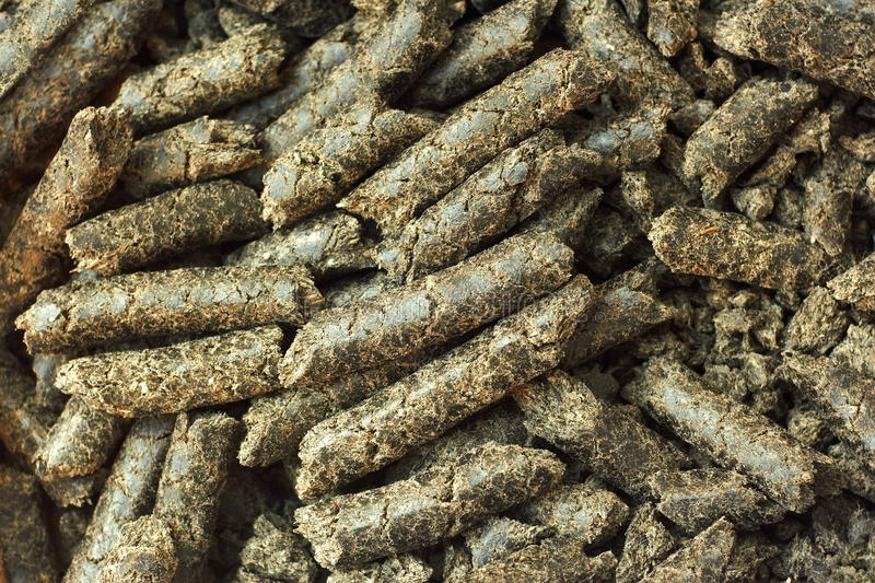 Download Sunflower oilcake pellets stock image. Image of bunch - 27158863