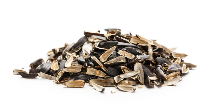 Sunflower seed husk. S on the white background stock photos