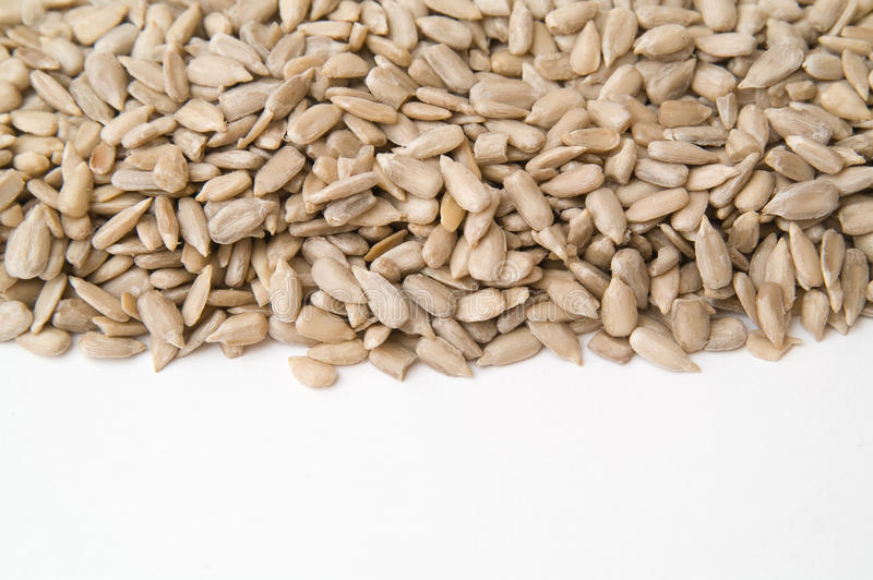 Download Sunflower seeds stock photo. Image of grilled, many, forage - 12898694