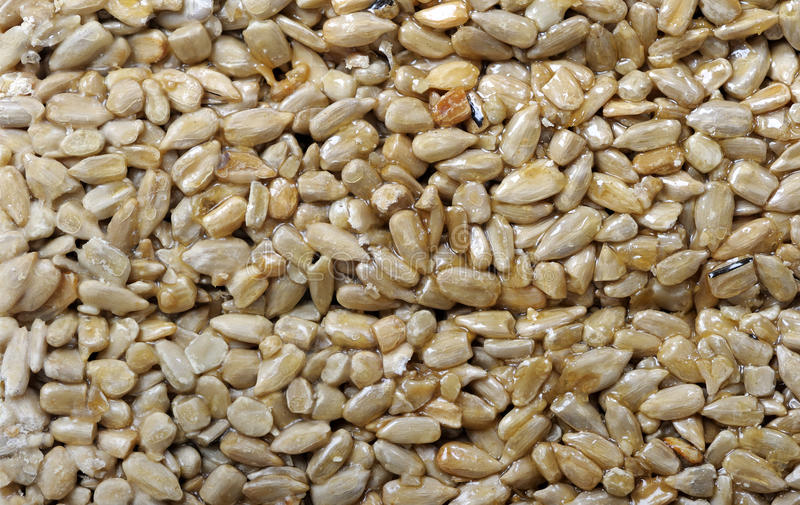 Download Sunflower Seeds Royalty Free Stock Image - Image: 23588466