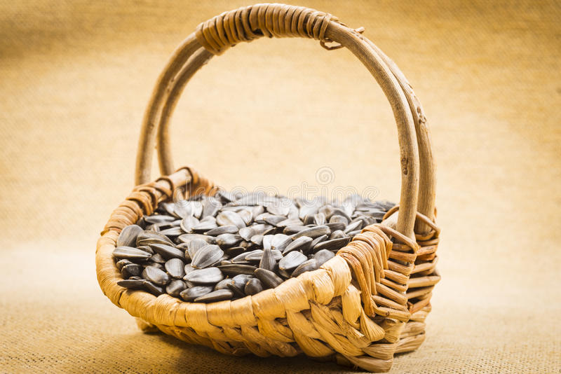 Download Sunflower seeds stock photo. Image of seeds, shelled - 28921360