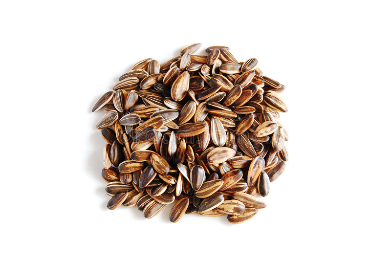 Sunflower Seeds. A handful of sunflower seeds royalty free stock photos