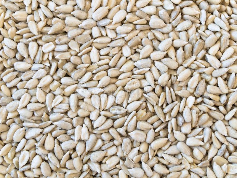 Download Sunflower seeds stock image. Image of backgrounds, snack - 5745299