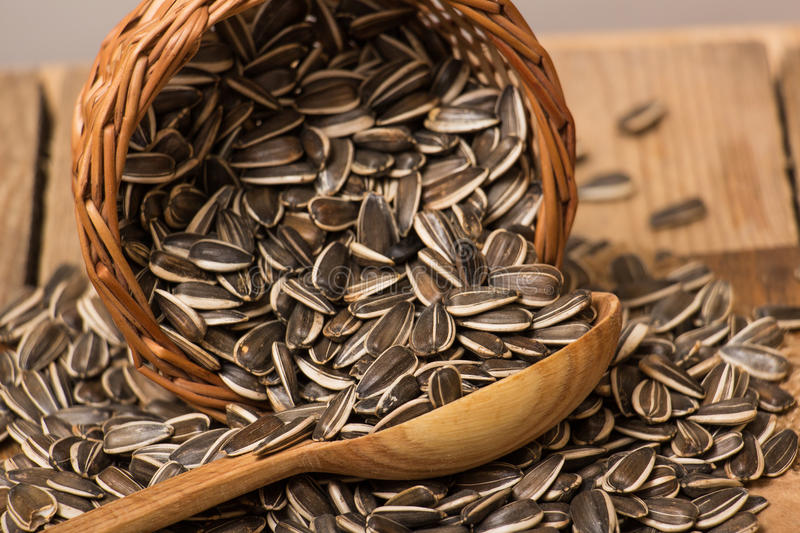 Sunflower seeds. In a basket and wooden spoon royalty free stock image