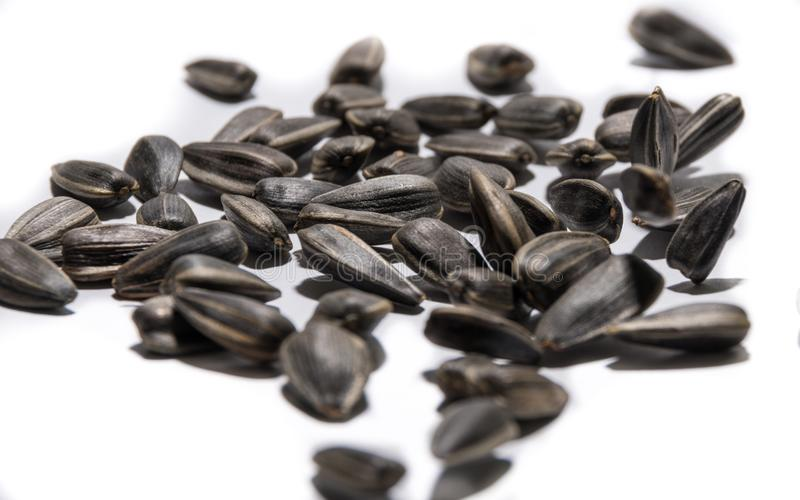 Sunflower seeds of black flowers jumping to music.  royalty free stock photo