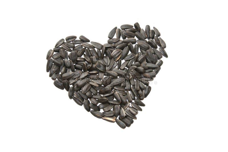 Sunflower seeds heart royalty free stock photo
