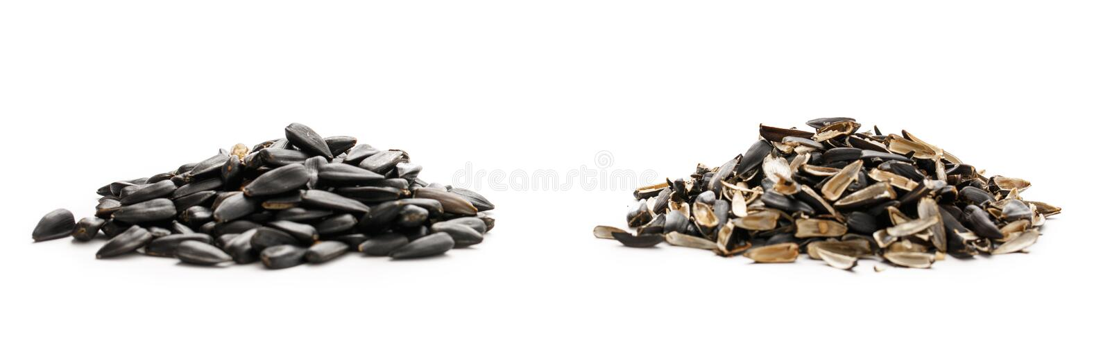 Sunflower seeds and husk. S on white background stock images