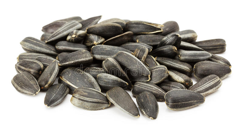 Sunflower seeds isolated on the white background royalty free stock image