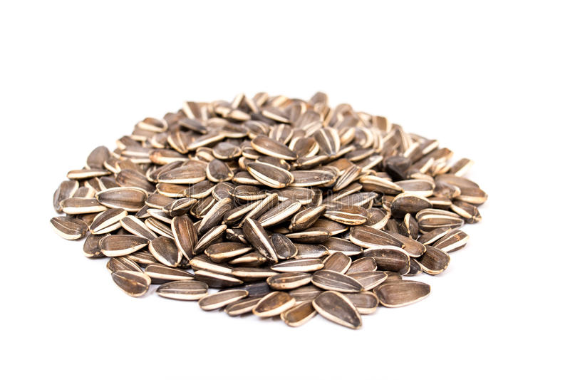 Sunflower seeds. Isolated on white background royalty free stock photos