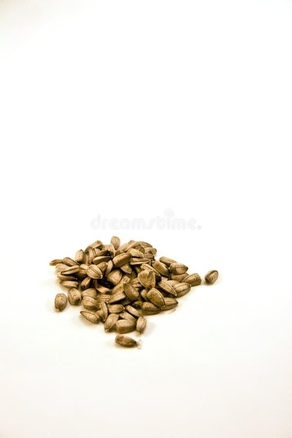 Free Sunflower Seeds On White Background Royalty Free Stock Image - 4383556