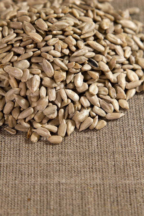 Download Sunflower Seeds On The Sacking Stock Image - Image: 23515221