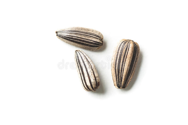 Sunflower seeds. On white background royalty free stock images