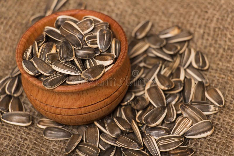 Sunflower seeds. In a wooden pot on the burlap sack stock photos