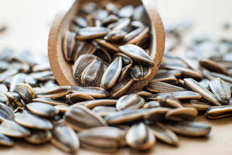 Sunflower seeds. In a wooden spoon stock images