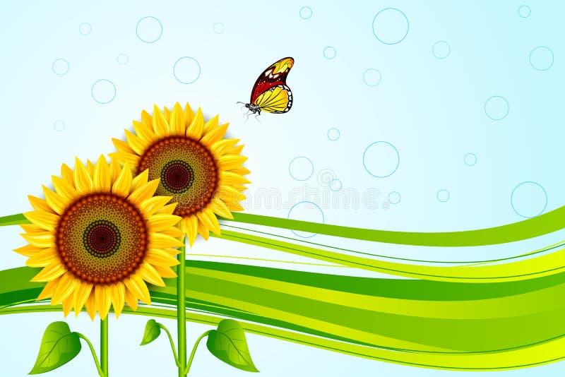 Download Sunflower stock vector. Image of bloom, nobody, fresh - 35347588