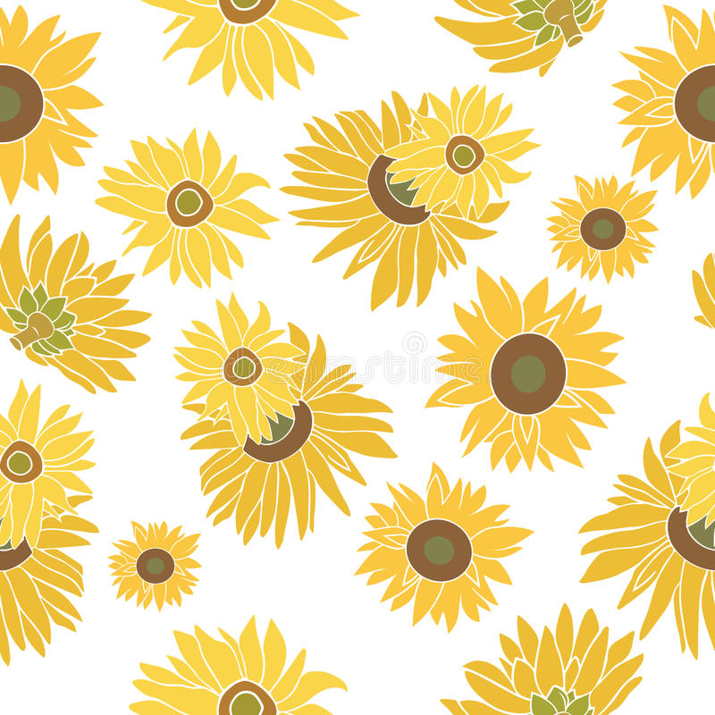 Sunflower vector seamless pattern on the white royalty free stock photo