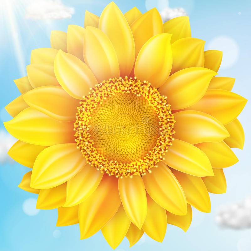 Free Sunflower With Blue Sky - Autumn. EPS 10 Stock Photography - 74962272