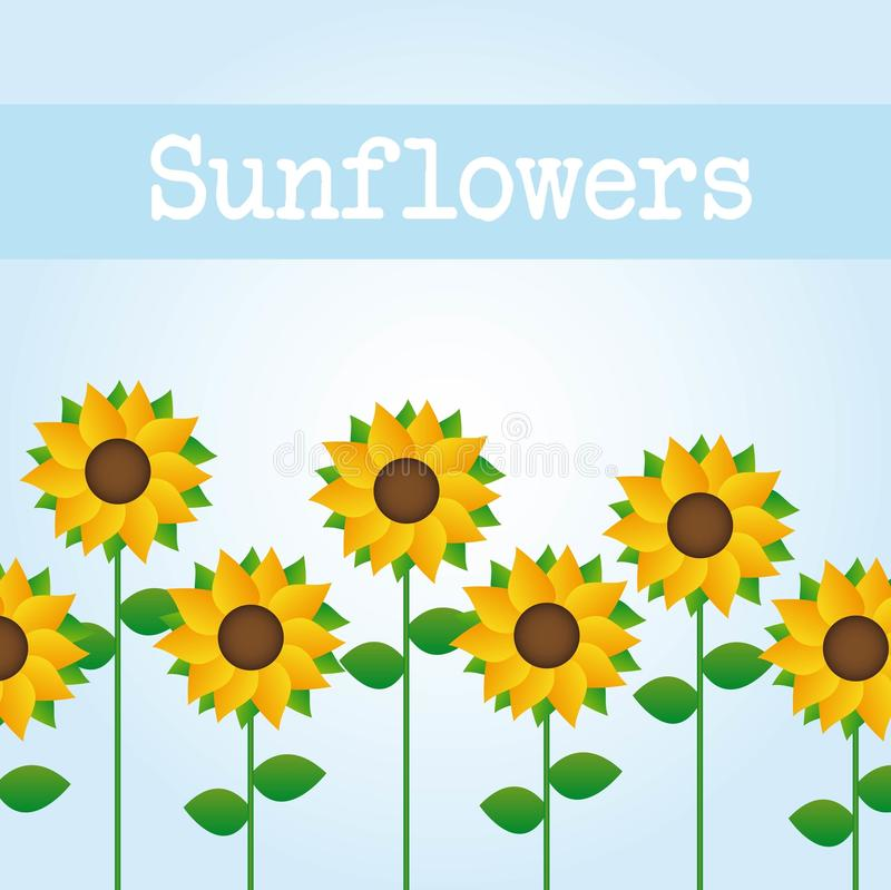 Download Sunflowers stock vector. Image of cheerful, happy, botany - 21443277