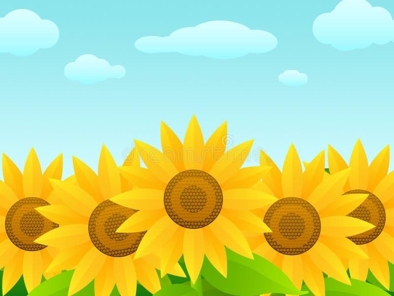 Sunflowers royalty free illustration