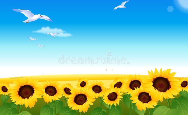 Download Sunflowers stock illustration. Illustration of flowers - 5238925