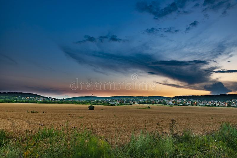 Sunflowers and beautiful sunflower fields from Bulgaria stock images