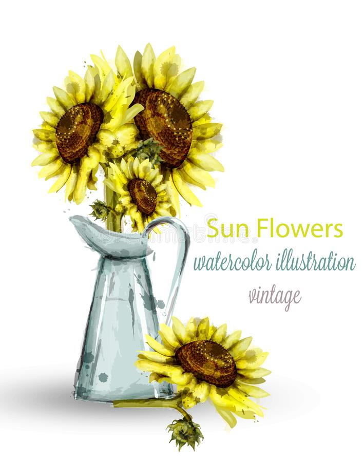 Sunflowers bouquet watercolor Vector. Floral spring decorations stock illustration