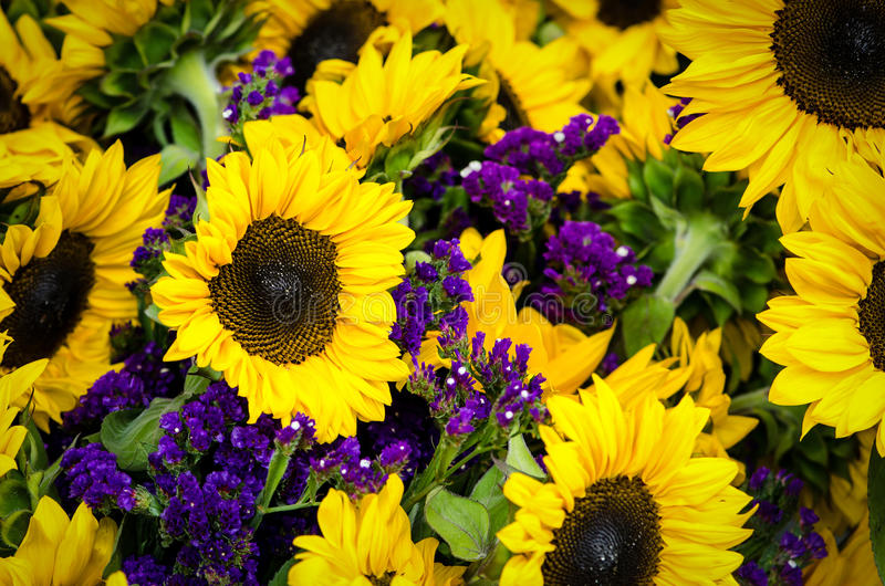 Sunflowers. Cut sunflowers with smaller purple blossoms at a farmers market royalty free stock images
