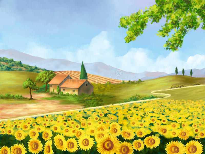 Download Sunflowers Field Royalty Free Stock Photo - Image: 13349855