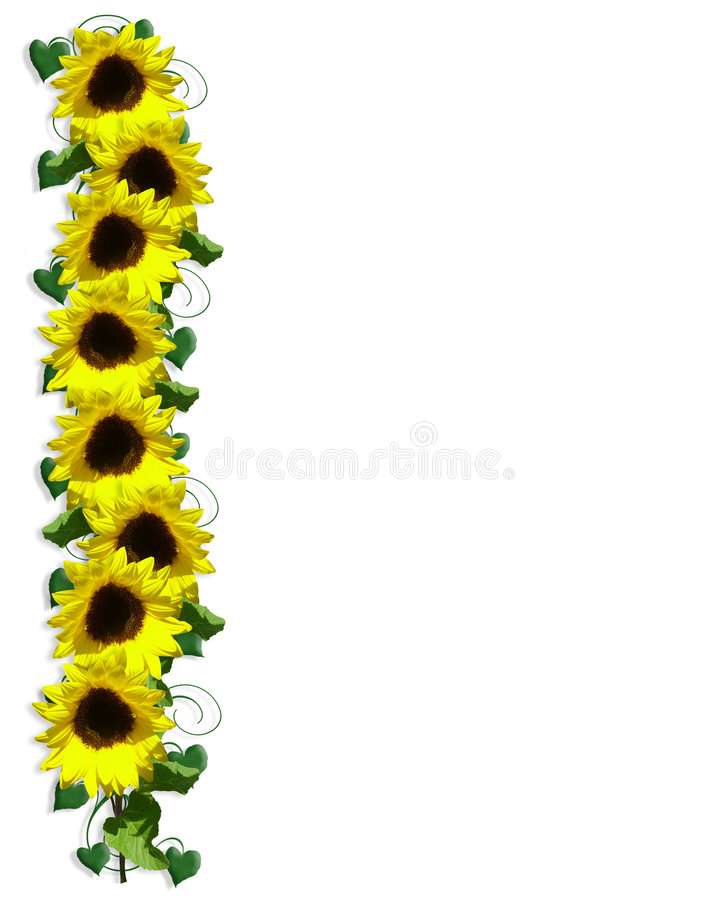 Sunflowers floral Border stock illustration. Image of card ...