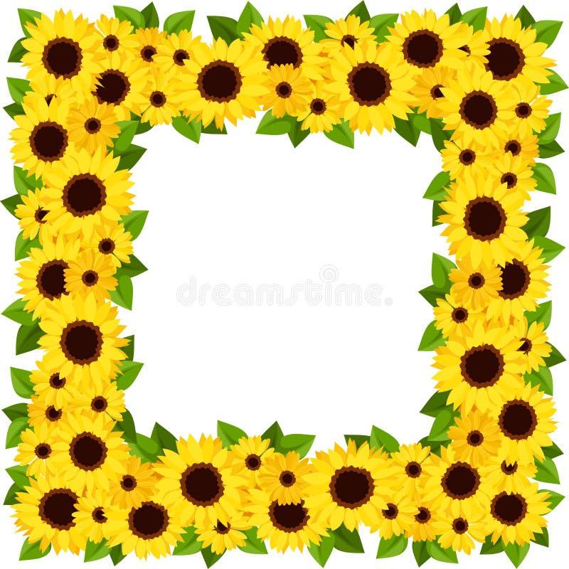 Sunflowers frame. stock vector. Illustration of blank - 34020486