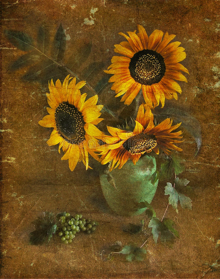 Free Sunflowers In A Vase, A Still-life. Royalty Free Stock Photos - 13868728