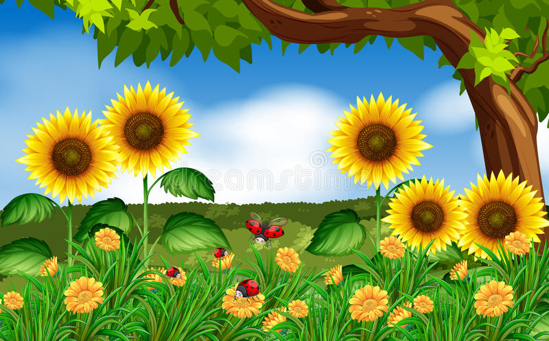 Ladybugs In Garden On Computer Screen Stock Vector - Illustration ...