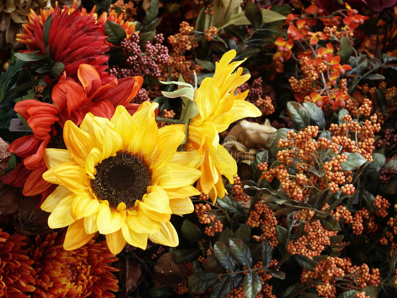 Sunflowers and other fall flowers stock photography