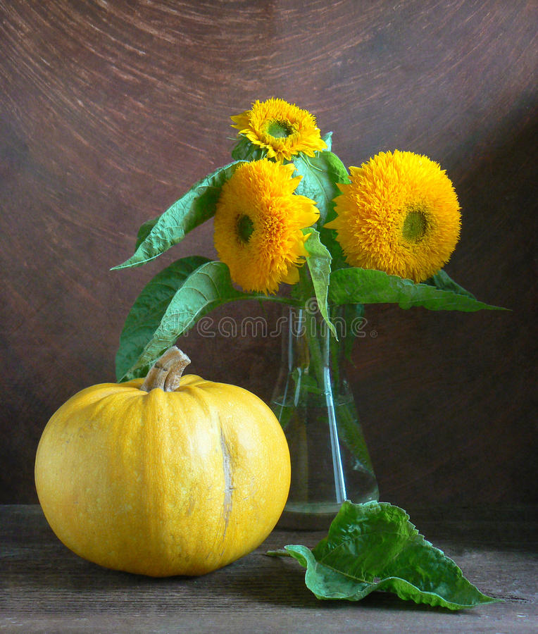 Sunflowers with pumpkin royalty free stock photos