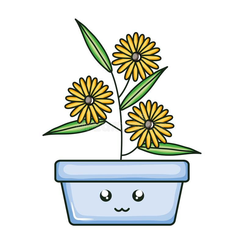 Sunflowers in square ceramic pot kawaii character. Vector illustration design vector illustration