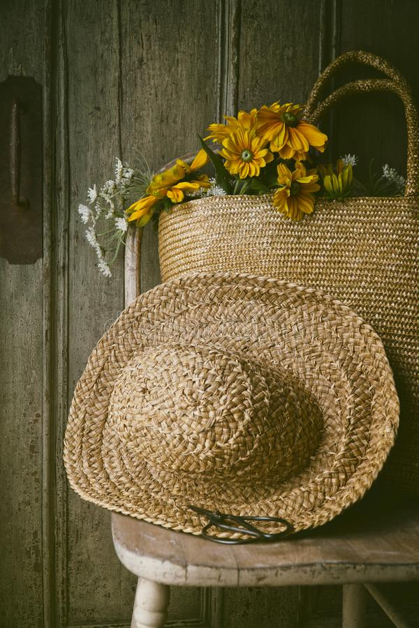 Sunflowers in straw purse on chair stock photo