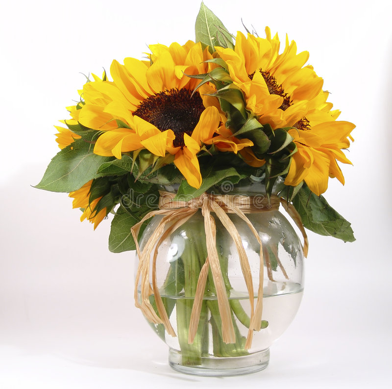 Download Sunflowers in Vase stock photo. Image of decorate, gift, color - 5370