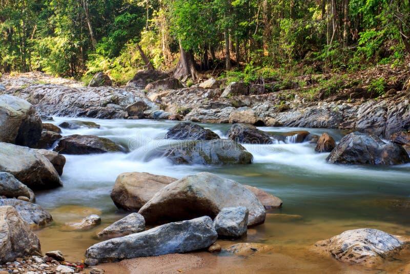 Sungai Selai стоковое фото rf