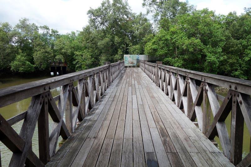 Sungei Buloh沼泽地储备公园主要桥梁  库存照片