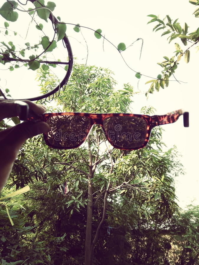 sunglass fotos de stock