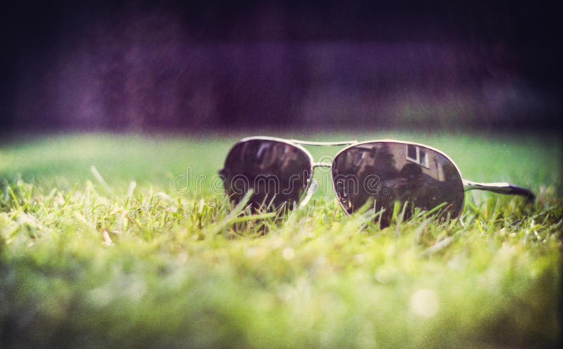 sunglasses fotografia de stock