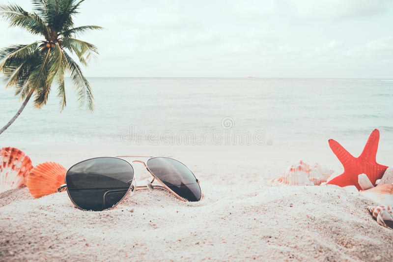 Sunglasses on sandy in seaside summer beach with starfish, shells, coral on sandbar and blur sea background. royalty free stock photo