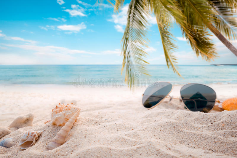 Sunglasses on sandy in seaside summer beach with starfish, shells, coral on sandbar and blur sea background. Concept of recreation in summertime on tropical stock photography