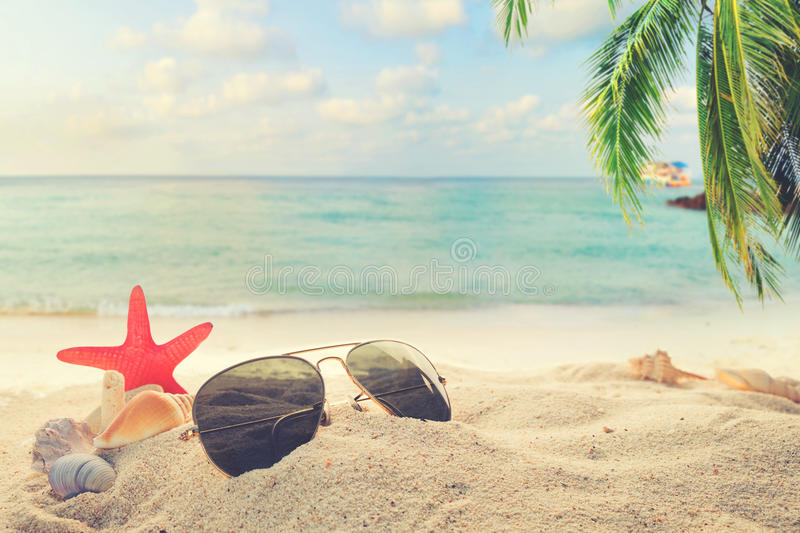 Sunglasses on sandy in seaside summer beach with starfish, shells, coral on sandbar and blur sea background. Concept of recreation in summertime on tropical royalty free stock image