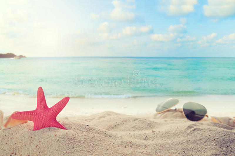 Sunglasses on sandy in seaside summer beach with starfish, shells, coral on sandbar and blur sea background. Concept of recreation in summertime on tropical stock images