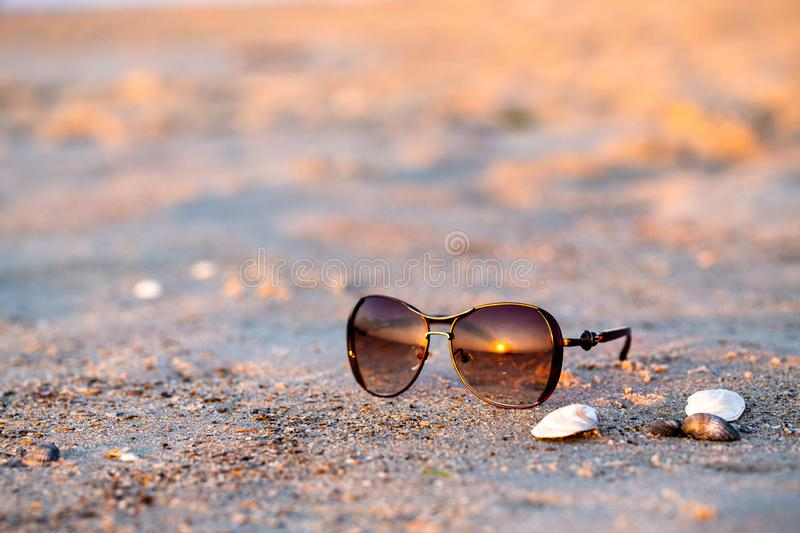 Sunglasses and seashells lie on the wet sand stock photography