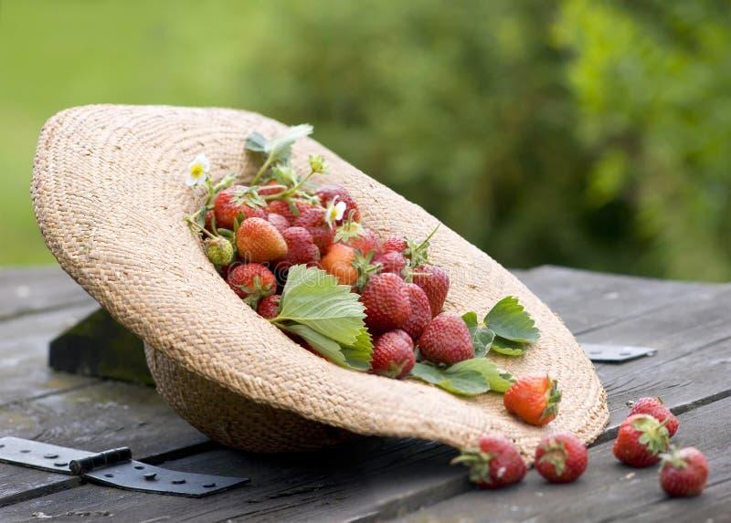 Sunhat avec la fraise photographie stock libre de droits