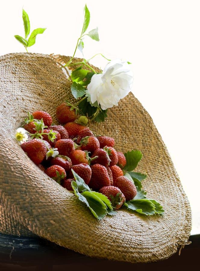 Sunhat et fraise photographie stock libre de droits