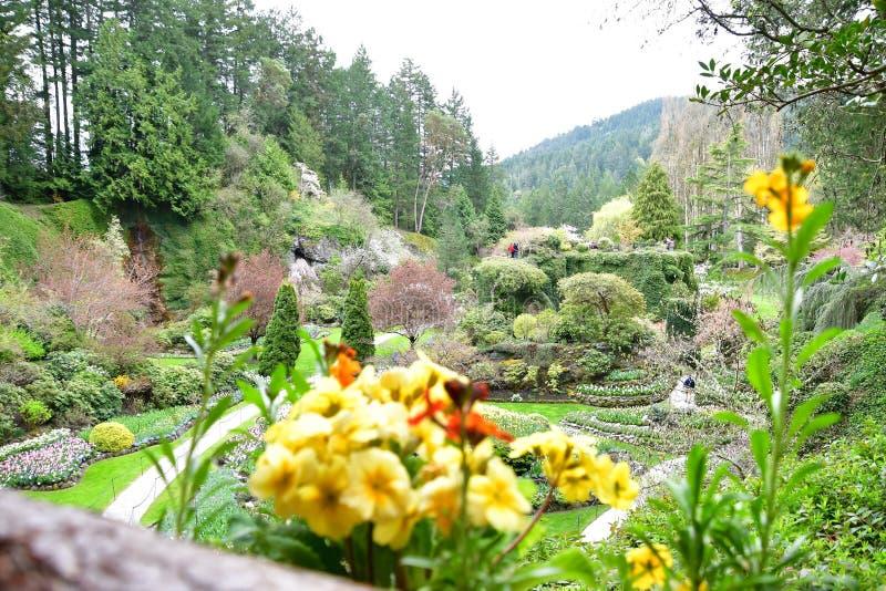 Sunken сад садов Butchart стоковые фотографии rf